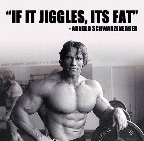 Top 5 Arnold Quotes About Fitness