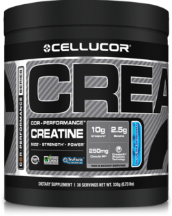 best creatine on the market